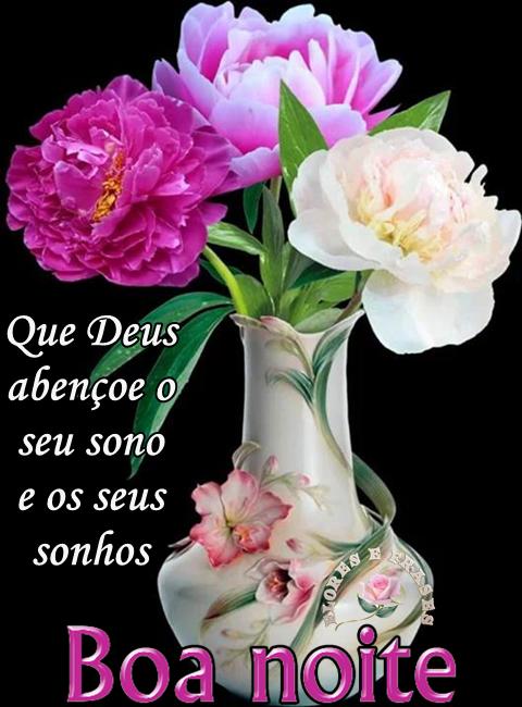 Flores E Frases Boa Noite