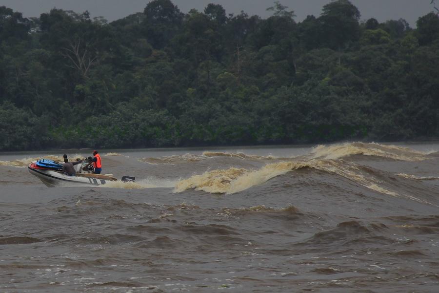 Wisata Ombak Bono Sungai Kampar