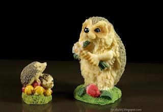 http://fotobabij.blogspot.com/2015/04/jezowa-rodzinka-hedgehog-family.html