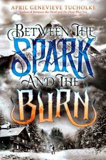 https://www.goodreads.com/book/show/18667954-between-the-spark-and-the-burn?from_search=true
