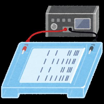 電気泳動装置のイラスト