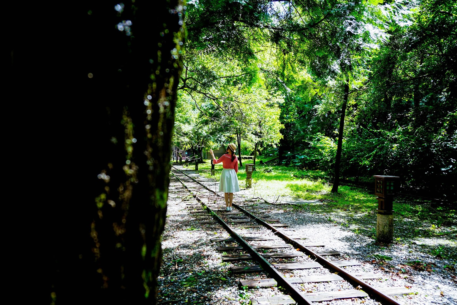 beautyanxiety.com-beautyanxiety.com-cultural-park-forest-DSC08497.jpg