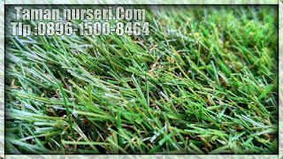 rumput sintetis cikarang