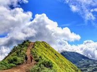 15 fakta dan tips mendaki gunung Andong Magelang ( 1.726 Mdpl )