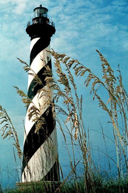 phare et herbes hautes