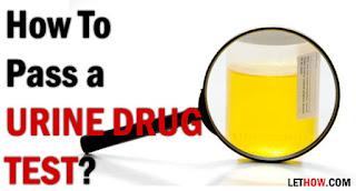 how to pass a drug test,how to pass a urine drug test,pass drug test,pass a drug test,drug test,how to pass drug test,how to pass a urine test,how to pass a drug test fast,how to pass a drug test in 24 hours,how do you pass a drug test,how to pass a drug test in a week,to pass a drug test,ways to pass a drug test,urine drug test,passing a drug test