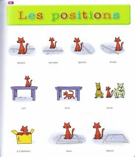 20882687 256846208167747 2749945854173437254 n - Mon premier dictionnaire illustré