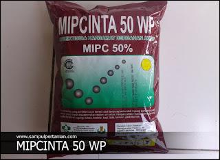 MIPCINTA 50 WP Insektisida bahan aktif MIPC