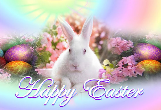 Best Happy Easter bunny  Images