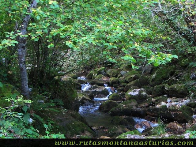 Ruta de los Arrudos y Corteguerón: Río