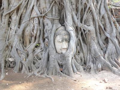 Buda, Ruinas de Ayuttayah, Tailandia, La vuelta al mundo de Asun y Ricardo, vuelta al mundo, round the world, mundoporlibre.com