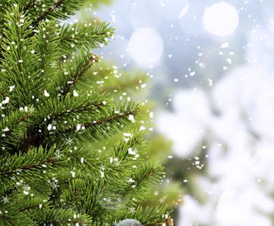 Árbol de navidad con un poquito de nieve
