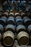 Andalusian auringossa_ruokablogi_matkablogi_viiniblogi_sherrymatkalla Andalusiassa_Jerez_Valdespino_Grupo Estevez_