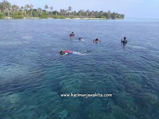 spot snorkeling di karimunjawa