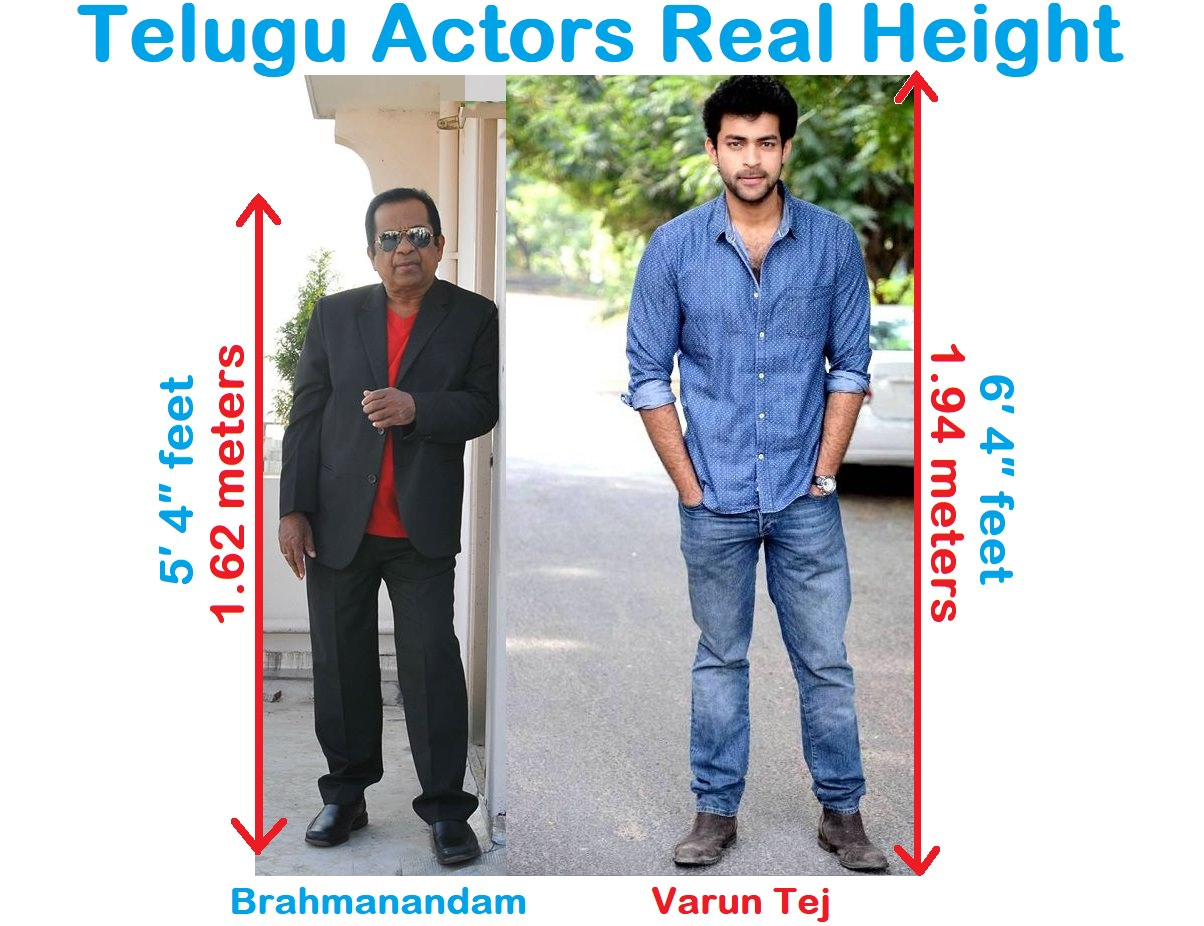 All Telugu Actors Height In Feet Cm And In Meter Original