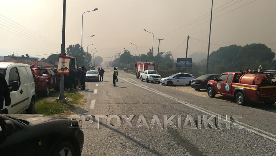 Εκτός ελέγχου η φωτιά στη Σιθωνία Χαλκιδικής -Εκκενώνεται προληπτικά οικισμός (φώτο βίντεο)