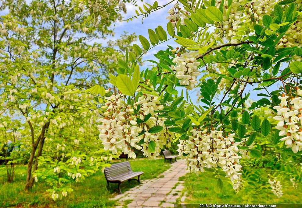 10 красивых фото Крыма в мае