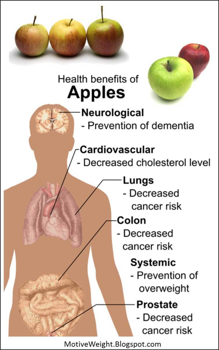 MotiveWeight: The Health Benefits of Apples