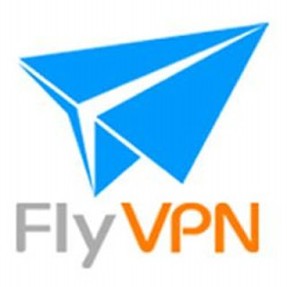 FlyVPN服務 網路環境 突破限制