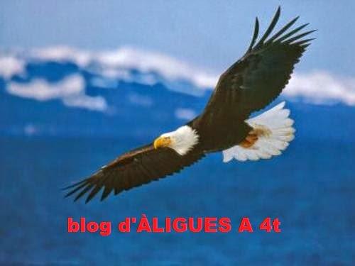 produccionsartistiquesaliguesde4t.blogspot.com