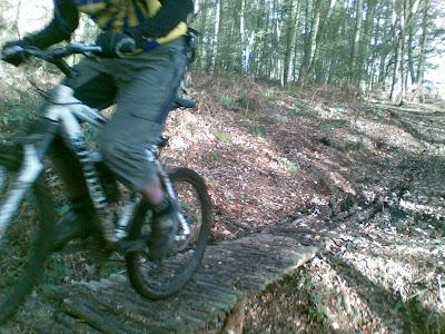 Delamere Forest Sat 3 Dec