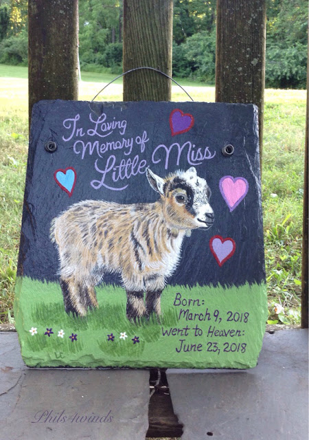 Phils4winds Painted Farm Signs Portraits Livestock And