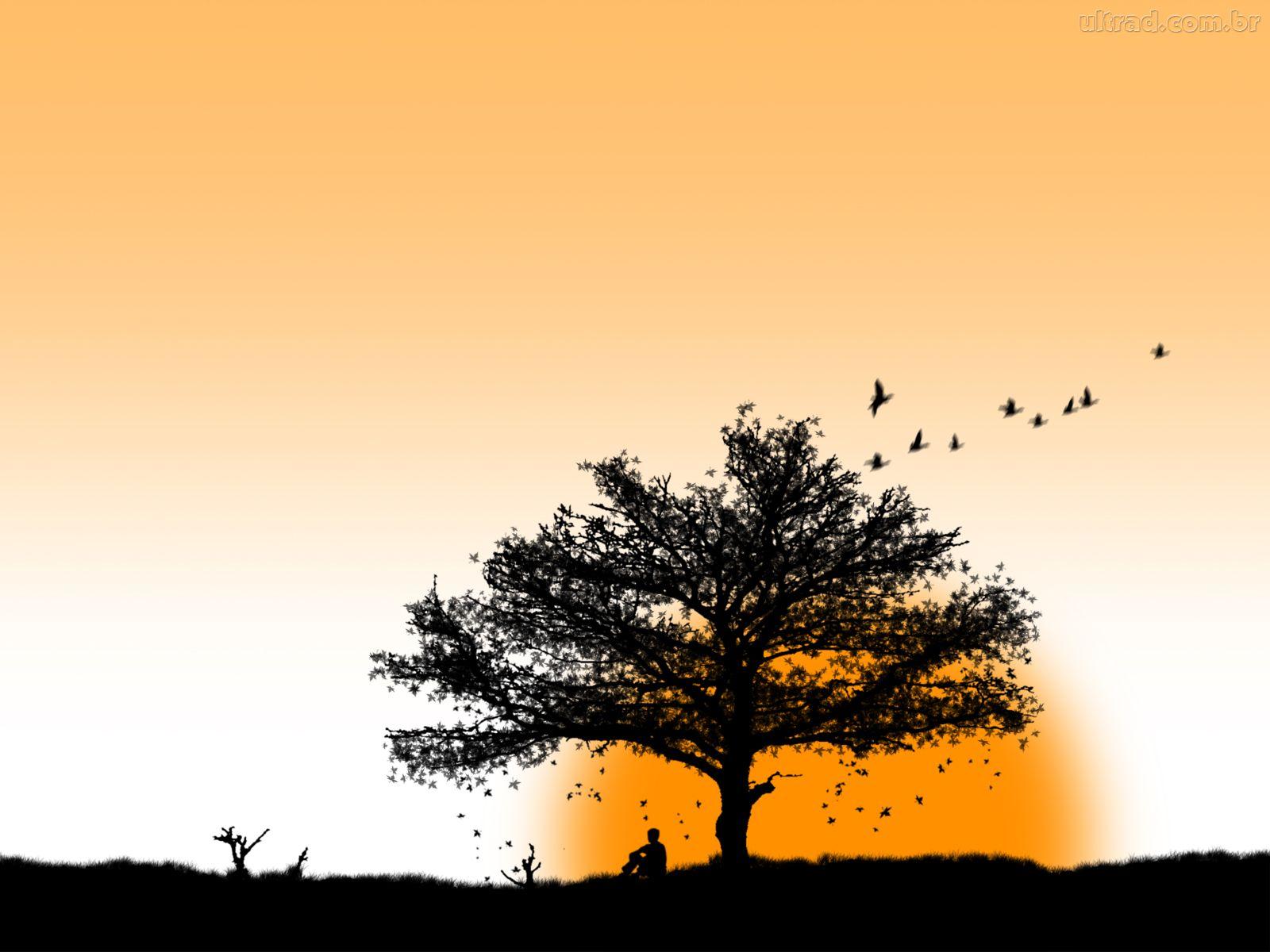 Poesias Para Refletir: Paz E Harmonia