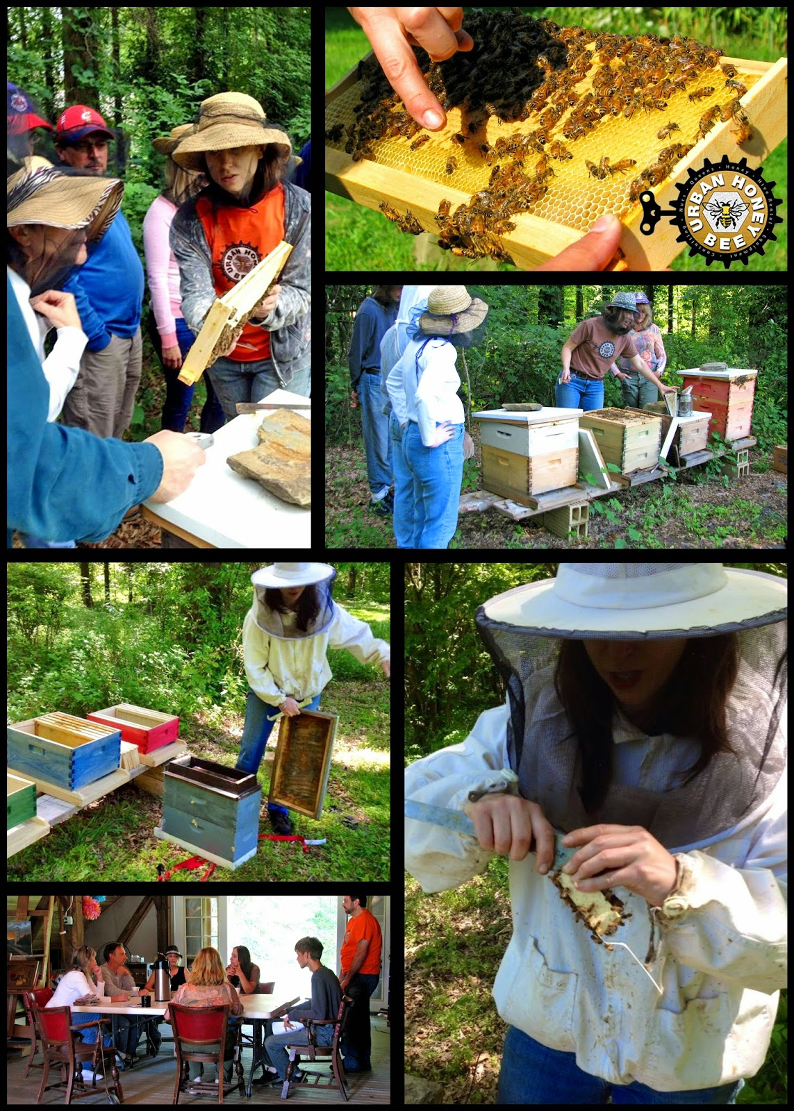 Wolf Creek Trading Company Will Be Expanding Its Apiary In 2017 With The Arrival Of Package Bees Come Learn How To Install