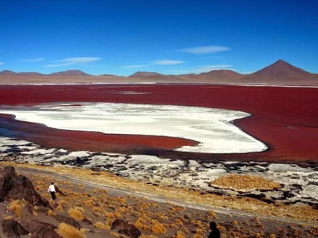 Laguna Colorada, Red Lagoon