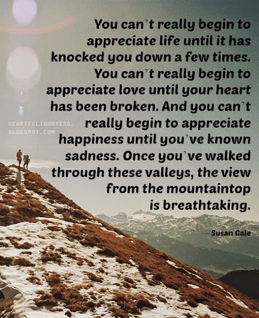 Appreciate Life Quotes You can't really begin to appreciate life until it has knocked you  Appreciate Life Quotes