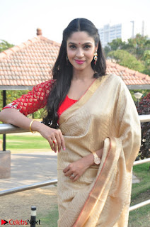 Angana Roy in Silk Saree at Teaching Tree Carnival .xyz 016.JPG