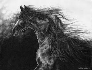 caballos-y-animales-silvestres-a-lapiz