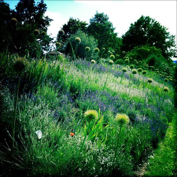 Eva Im Garten Lustvoll Gartnern Der Garten Der Doschkas