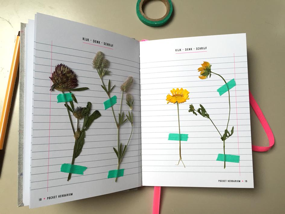 Wat Maakt Ze Nu Weer Herbarium 3 Huis Design 2018 Beste Huis Design 2018 [somenteonecessario.club]