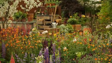 Cuando un stand se convierte en jardín. Hillier en Chelsea
