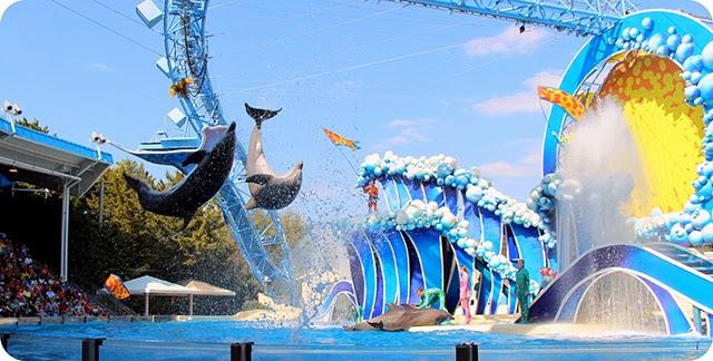 SeaWorld - Orlando : Whale & Dolphin Theater