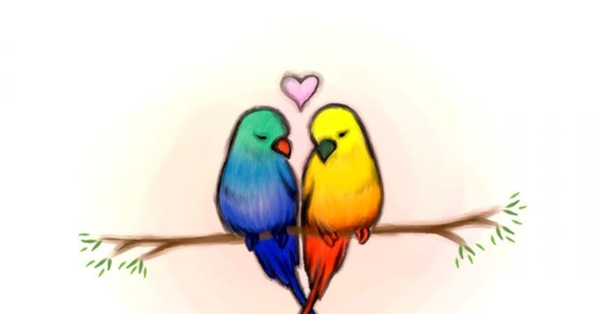Love Bird Drawings In Color Wallpapers Gallery