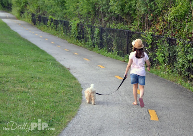 There's an upper and lower trail for dog walking, biking, and running at the Skokie Sculpture Walk