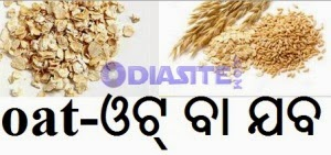 Odia meaning of Oats