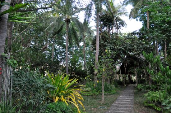 Laiya San Juan Batangas Photo Diary Bernardo's Hideaway