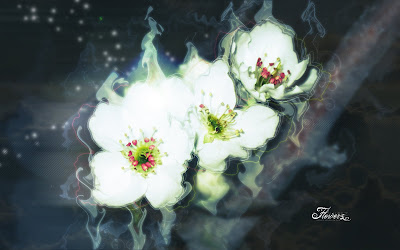 pintura-sobre-flores-blancas