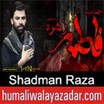 https://www.humaliwalyazadar.com/2019/01/shadman-raza-noha-ayyam-e-fatima-2019.html
