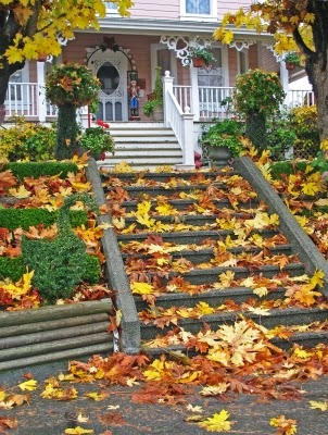 home stairs leaves neighborhood