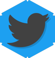 twitter hexagon icon