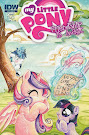 MLP Friendship is Magic #11 Comic Cover Retailer Incentive Variant