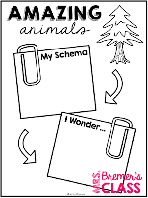 Generic research pack can be used for learning about ANY animal! Topics include animal habitats, features and characteristics, how they move and grow, what they eat, predators, and much more! #1stgrade #2ndgrade #3rdgrade #animalproject  #science #projects