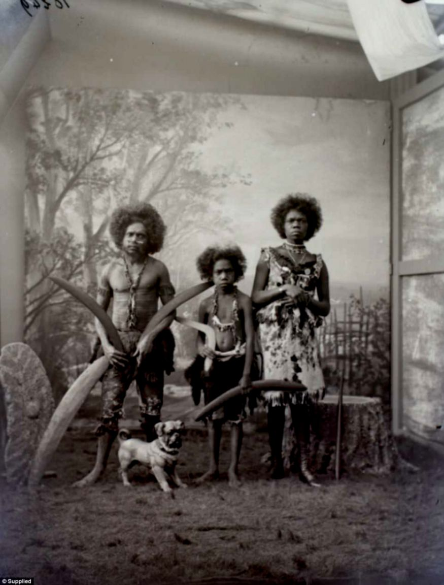 Aboriginal people kept in The Human Zoo Daily Mail Online