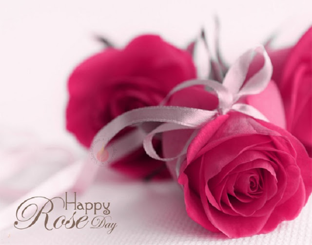 Rose Day Wallpapers images, happy rose day