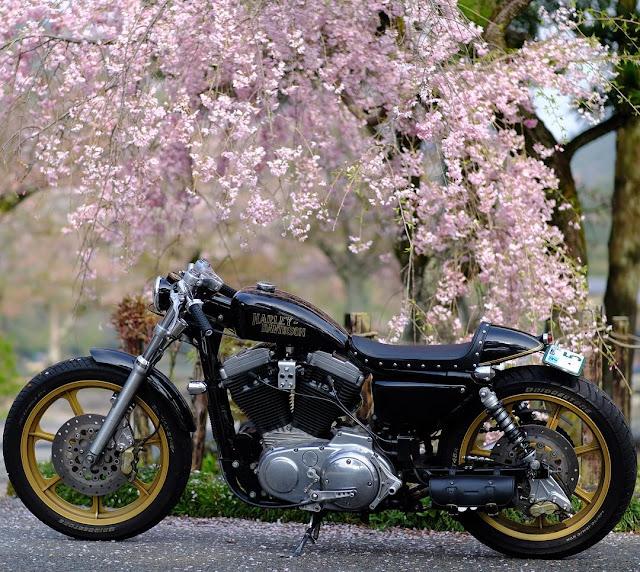Harley Davidson XL883 By Hirock Kyoto Hell Kustom