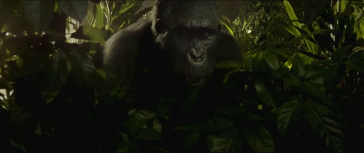 the legend of tarzan 2016 trailer 720p hdtv